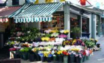 norwich-market-2